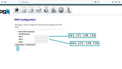 Photo of adding dns on logn router